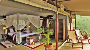 Mara bush camp – private wing